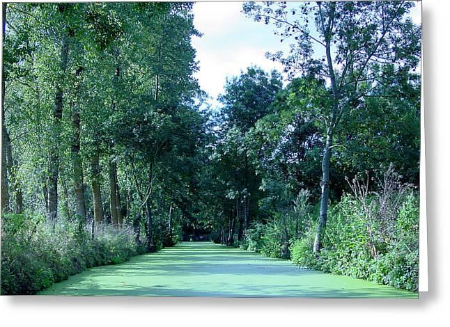 Fens Greeting Cards - Poitevin Marsh Greeting Card by Poitevin Marsh