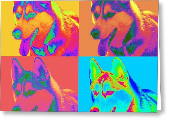 Pop Art Siberian Husky Greeting Card by Renae Laughner