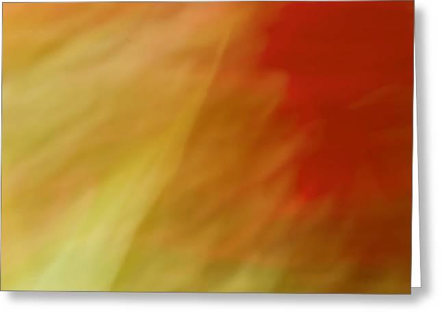Gaia Greeting Cards - Portulaca II Greeting Card by Margaret Denny