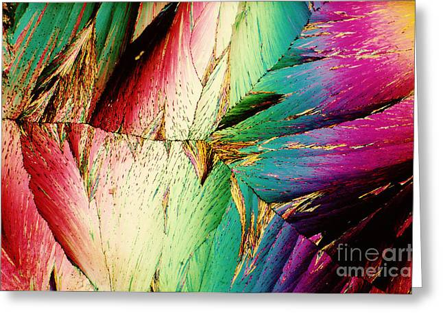 Polarized Greeting Cards - Potassium Nitrate Greeting Card by Michael W. Davidson