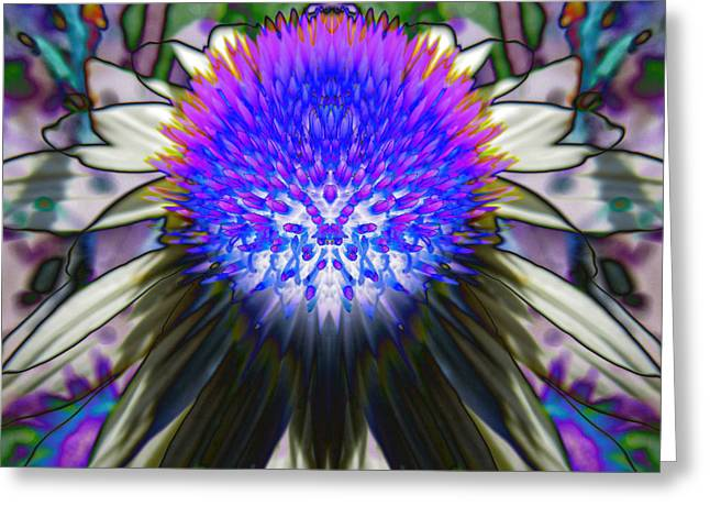 Abstracted Coneflowers Greeting Cards - Purple Coneflower Greeting Card by Michele Caporaso