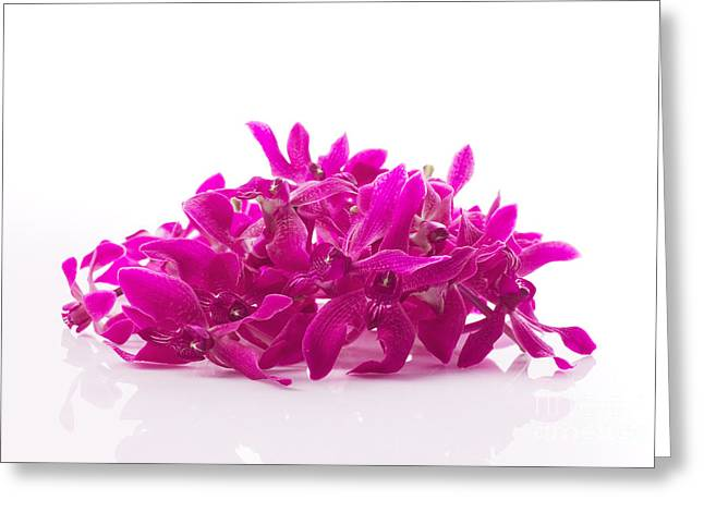 Spa-treatment Greeting Cards - Purple Orchid Pile Greeting Card by Atiketta Sangasaeng
