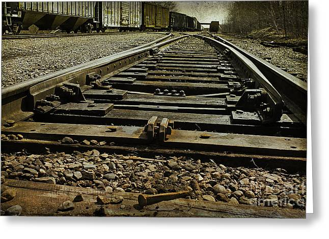 Railroad Tie Greeting Cards - Railroad Tracks Greeting Card by Cindi Ressler