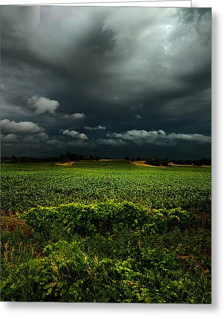 Severe Greeting Cards - Rain Greeting Card by Phil Koch