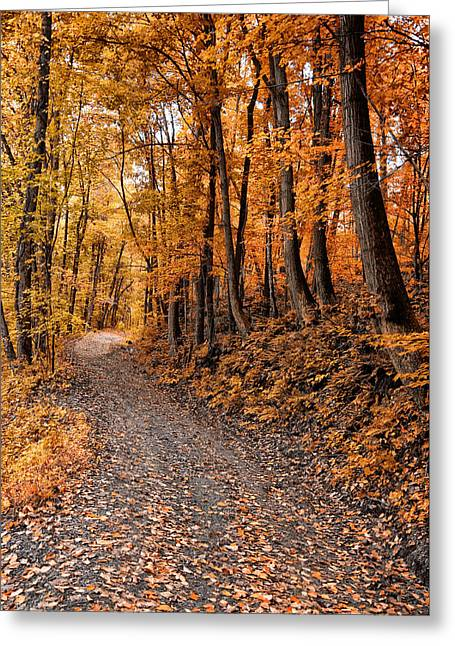 Gravel Road Digital Art Greeting Cards - Ramble On Greeting Card by Bill Cannon