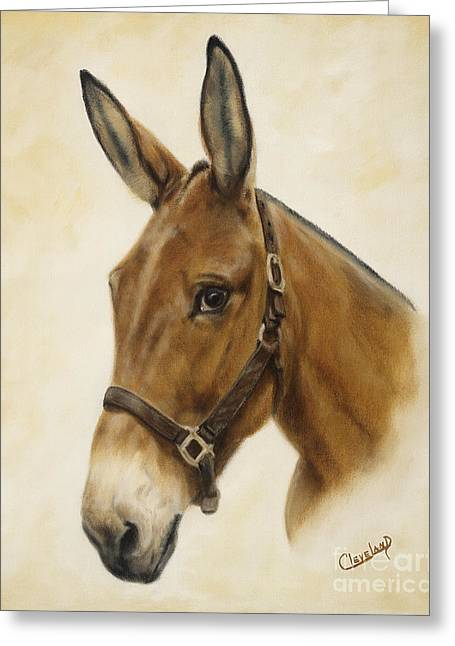 Equine Art Work Greeting Cards - Ready Mule Greeting Card by Cathy Cleveland