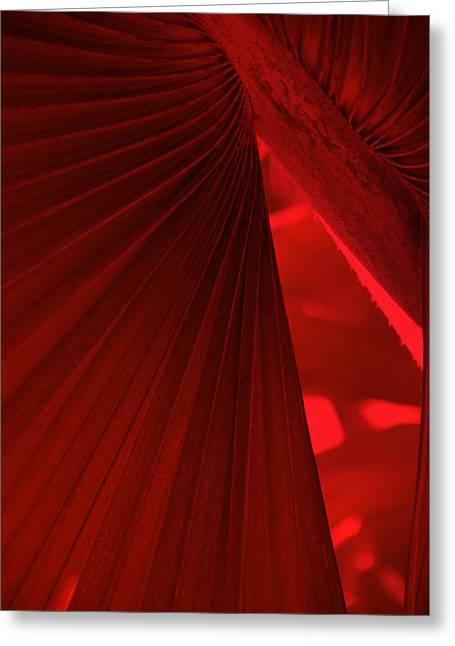 Deep Layer Greeting Cards - Red as Blood Greeting Card by Susanne Van Hulst