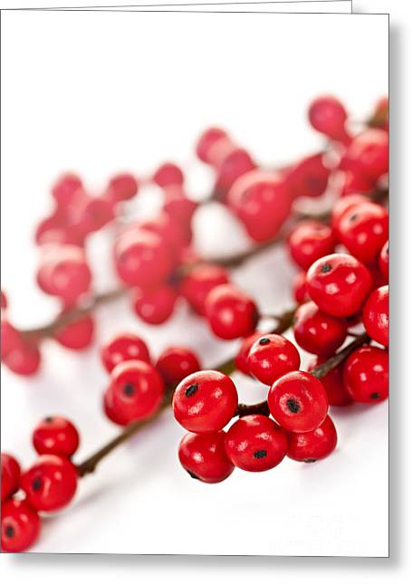 Red Christmas Berries Greeting Card by Elena Elisseeva