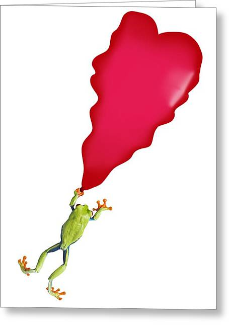 Visual Metaphor Greeting Cards - Red-eyed Tree Frog Agalychnis Greeting Card by Corey Hochachka