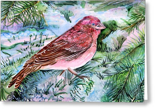 Pine Needles Drawings Greeting Cards - Red Finch Greeting Card by Mindy Newman