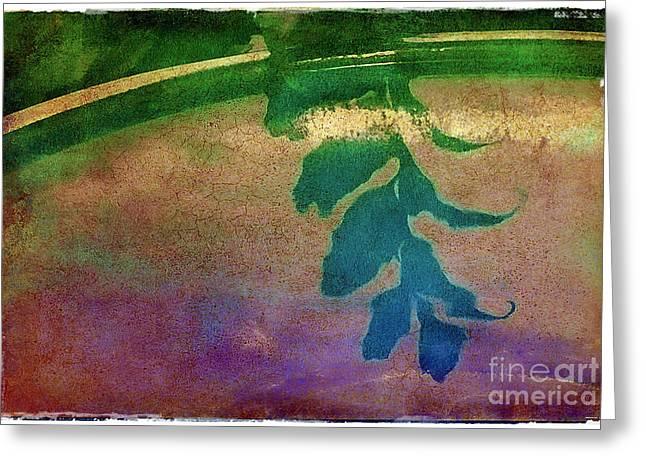 Reflection Greeting Card by Judi Bagwell