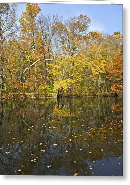 Fall Colors Greeting Cards - Reflection of Autumn Colors on the Canal Greeting Card by David Letts