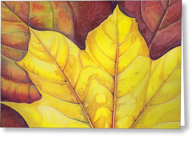 Autumn Prints Greeting Cards - Releaf Greeting Card by Amy Tyler