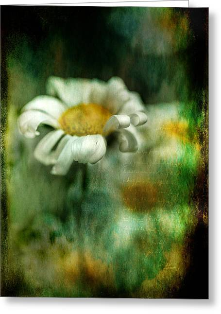 Mixed Media Photo Greeting Cards - Remember When Greeting Card by Bonnie Bruno