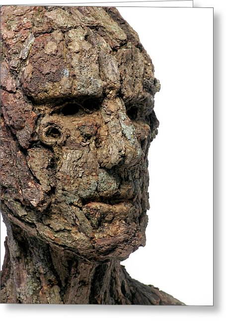 Ent Greeting Cards - Revered A natural portrait bust sculpture by Adam Long Greeting Card by Adam Long