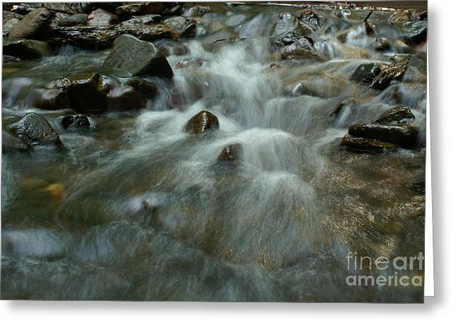 Sweating Photographs Greeting Cards - River Greeting Card by Odon Czintos