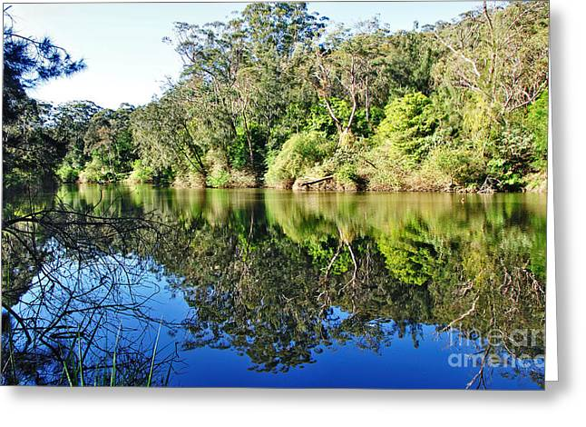 Blue And Green Greeting Cards - River Reflections Greeting Card by Kaye Menner