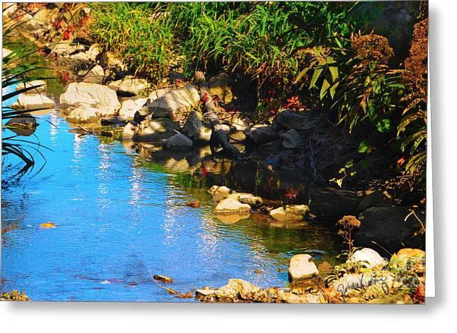 Plant Stretched Canvas Greeting Cards - Running Waters  Greeting Card by Gerlinde Keating - Keating Associates Inc