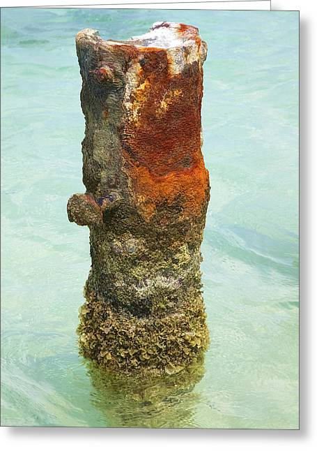 Reddish Flaking Iron Oxide Greeting Cards - Rusted Dock Pier of the Caribbean VII Greeting Card by David Letts
