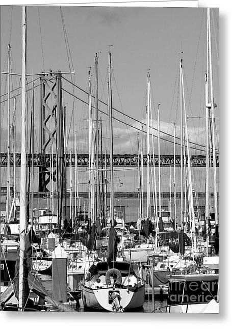Sailboat Photos Greeting Cards - Sail Boats at San Francisco China Basin Pier 42 With The Bay Bridge in The Background . 7D7683 Greeting Card by Wingsdomain Art and Photography