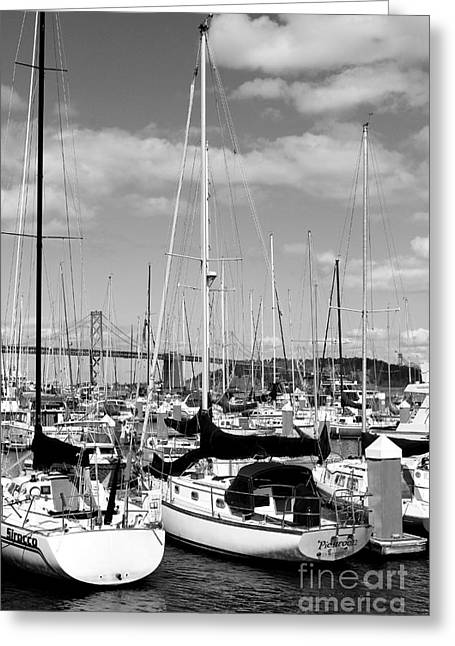 Sailboat Photos Greeting Cards - Sail Boats at San Francisco China Basin Pier 42 With The Bay Bridge in The Background . 7D7685 Greeting Card by Wingsdomain Art and Photography