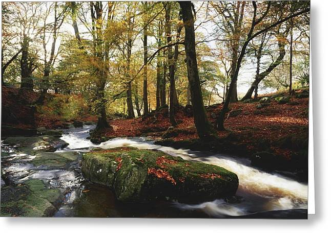 Sally Gap, County Wicklow, Ireland Greeting Card by The Irish Image Collection
