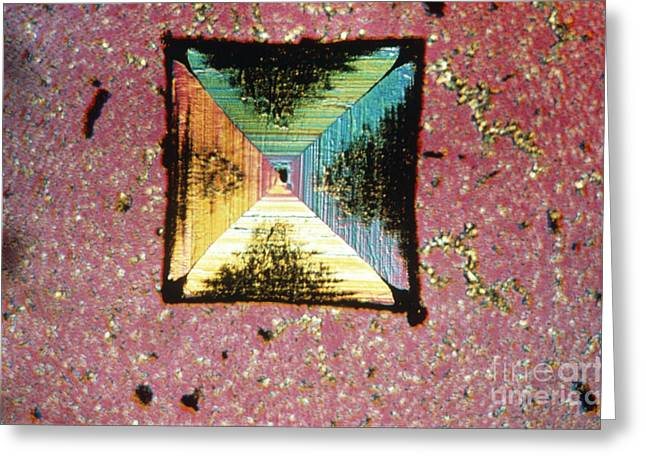 Polarized Greeting Cards - Salt Crystal Greeting Card by Eric V. Grave