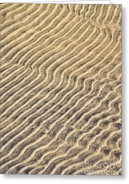 Abstract Nature Greeting Cards - Sand ripples in shallow water Greeting Card by Elena Elisseeva