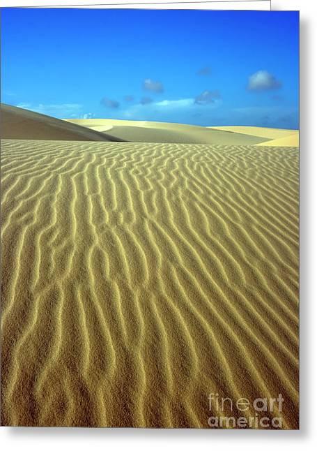 Sahara Sunlight Greeting Cards - Sandy desert Greeting Card by MotHaiBaPhoto Prints