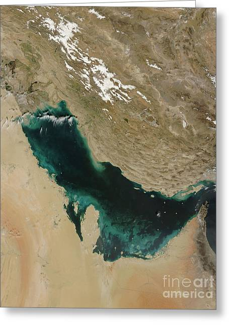 Bahrain Greeting Cards - Satellite View Of The Persian Gulf Greeting Card by Stocktrek Images