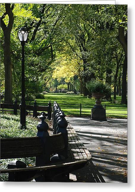 Green And Yellow Greeting Cards - Scenes From Central Park Greeting Card by Rob Hans