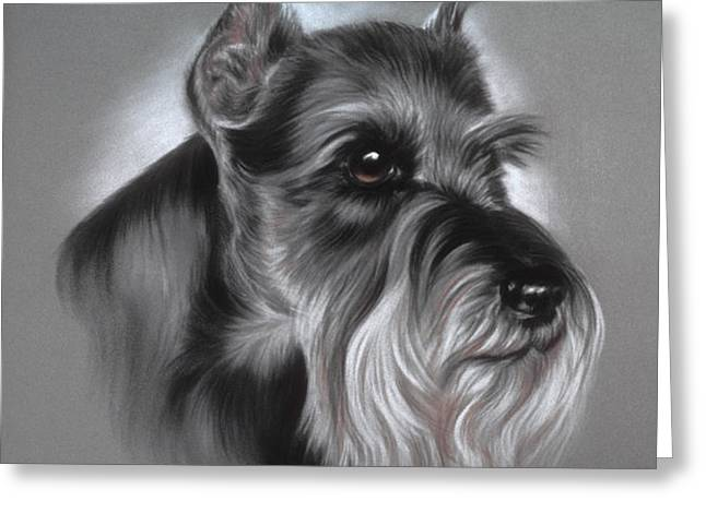 Schnauzer Greeting Card by Patricia Ivy