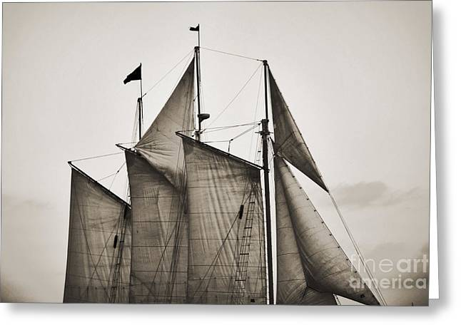Historic Schooner Greeting Cards - Schooner Pride Tall Ship Charleston SC Greeting Card by Dustin K Ryan