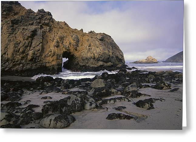 Pfeiffer Beach Greeting Cards - Sea Arch At Pfeiffer Beach Big Sur Greeting Card by Tim Fitzharris