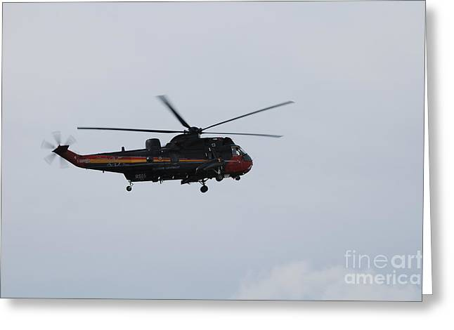 Air Component Greeting Cards - Sea King Helicopter Of The Belgian Army Greeting Card by Luc De Jaeger