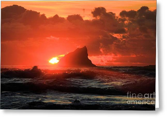 Forks Washington Greeting Cards - Second Beach Shark Greeting Card by Adam Jewell
