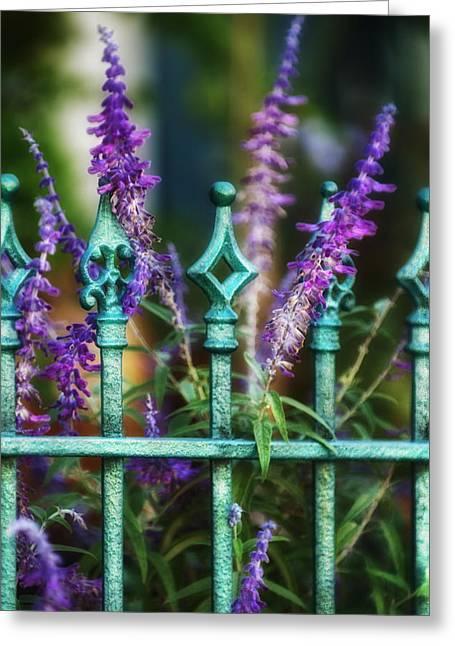 Brenda Bryant Greeting Cards - Secret Garden Greeting Card by Brenda Bryant