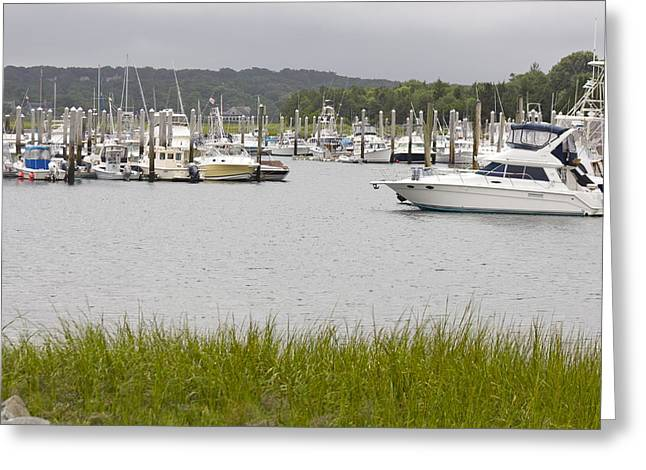Harbor Sesuit Harbor Greeting Cards - Sesuit Harbor Greeting Card by Amy Holmes