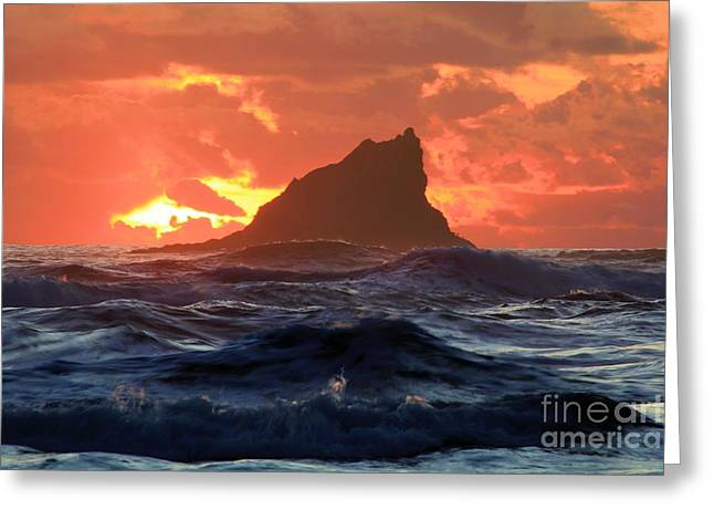 Forks Washington Greeting Cards - Shark Fin Soup Greeting Card by Adam Jewell