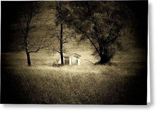 Country Shed Greeting Cards - Shed and Trees Greeting Card by Michael L Kimble