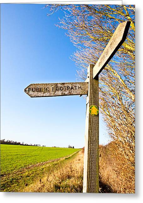 Winter Scenes Rural Scenes Greeting Cards - Sign post Greeting Card by Tom Gowanlock