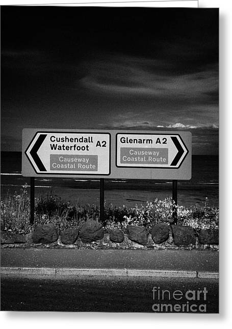 Scenic Drive Greeting Cards - Signposts For The Causeway Coastal Route At Carnlough Between Cushendall And Glenarm County Antrim Greeting Card by Joe Fox