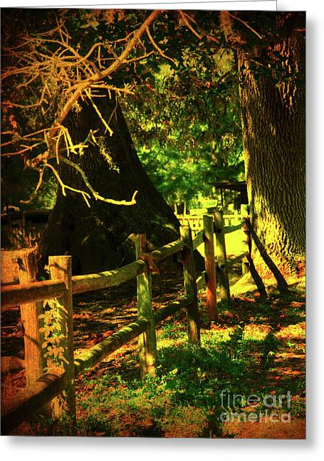 Middleton Greeting Cards - Silence Greeting Card by Susanne Van Hulst