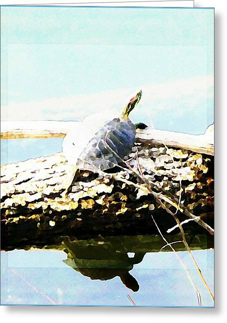 Fish Creek Greeting Cards - Sitting Pretty Greeting Card by Mindy Newman
