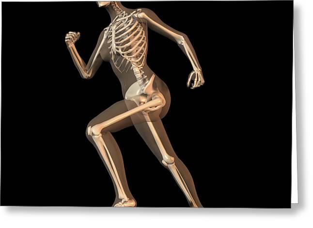 Jogging Greeting Cards - Skeleton Running Greeting Card by Friedrich Saurer