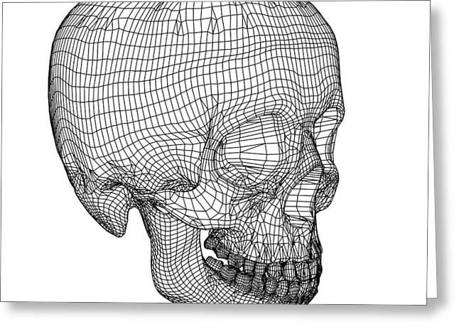 Bone Structure Greeting Cards - Skull, Computer Artwork Greeting Card by Pasieka