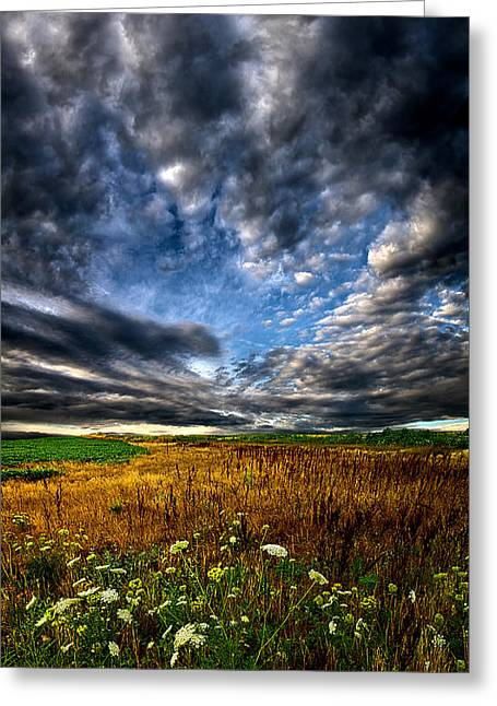 Red Photographs Greeting Cards - Sky High Greeting Card by Phil Koch