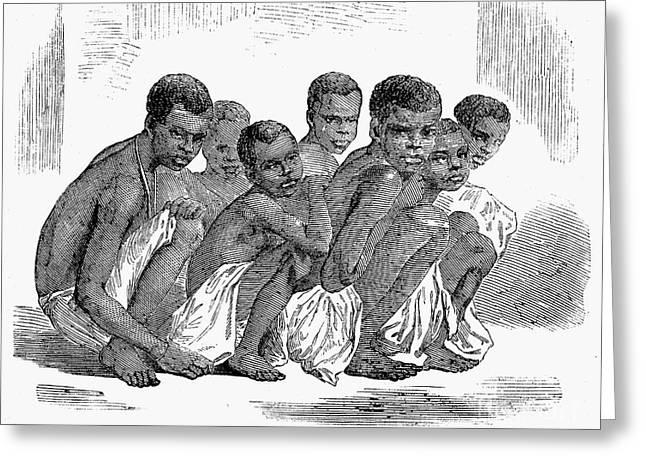 Slave Ship Greeting Cards - Slavery: Slave Ships, 1857 Greeting Card by Granger