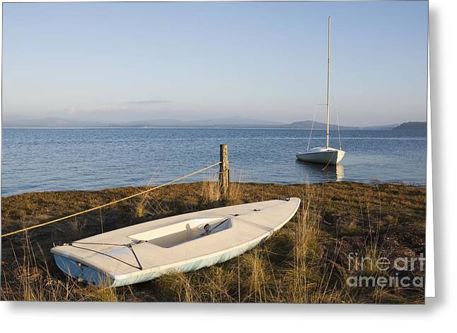 Two Sail Boats Greeting Cards - Small Sail Boats Along Tidal Grasses Greeting Card by Paul Edmondson