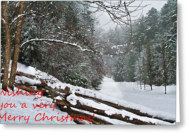 Snow Tree Prints Greeting Cards - Snowy Fence Greeting Card by Debra and Dave Vanderlaan